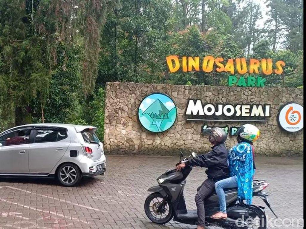 Usai Viral Video Dinosaurus Ngamuk, Pengunjung Wisata Ini Naik 4 Kali Lipat