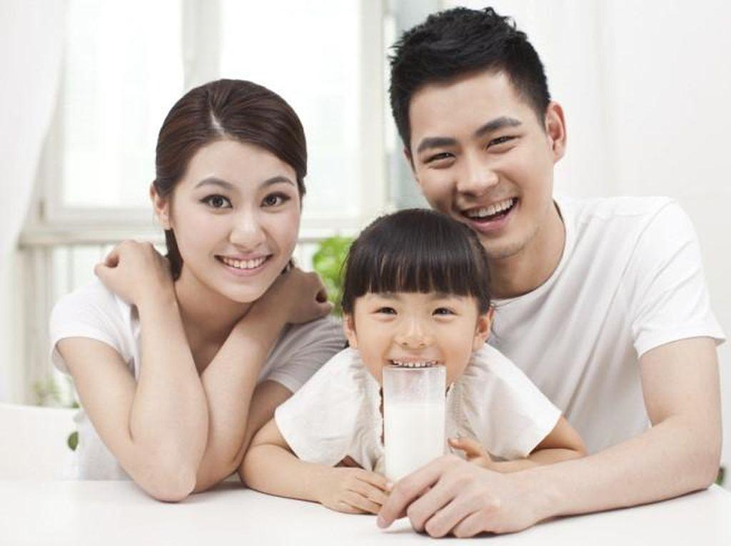 Kenali Manfaat Susu yang Berasal dari Sapi A2 untuk Anak!
