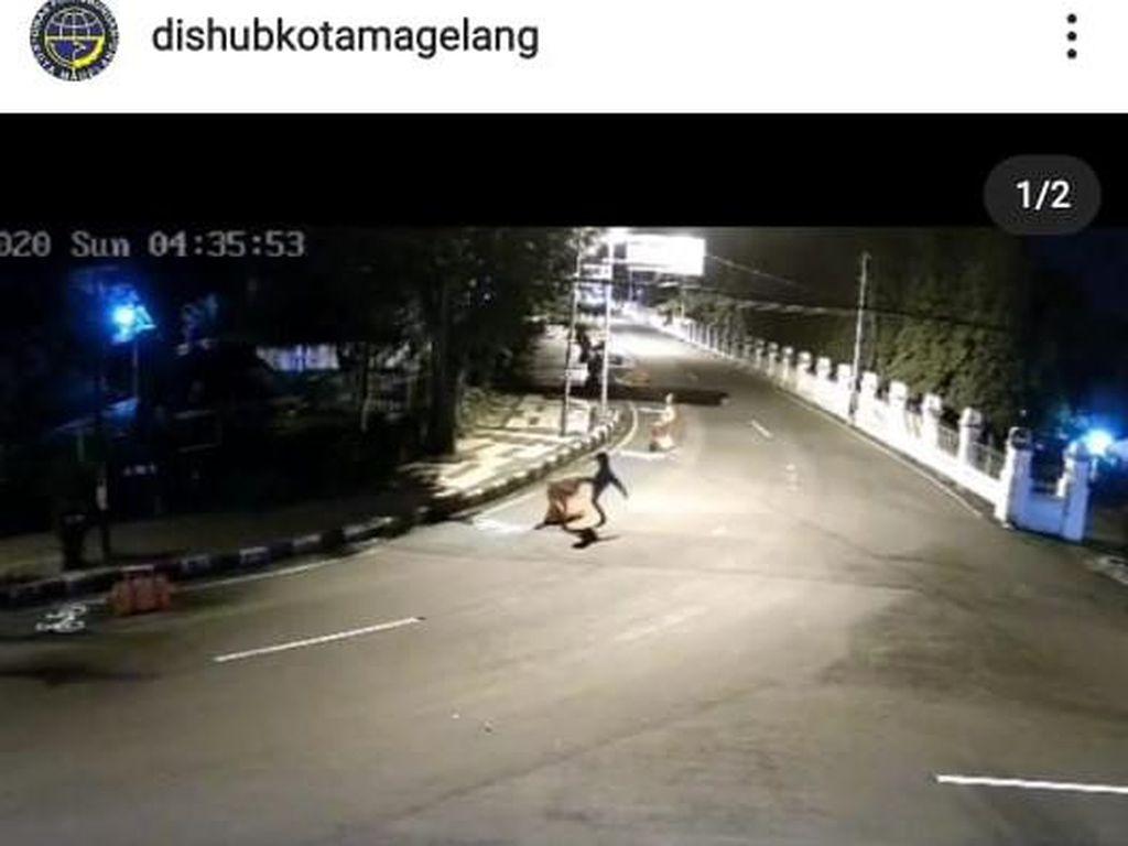 Aksi Pemotor Tendangi Water Barrier di Magelang Terekam CCTV