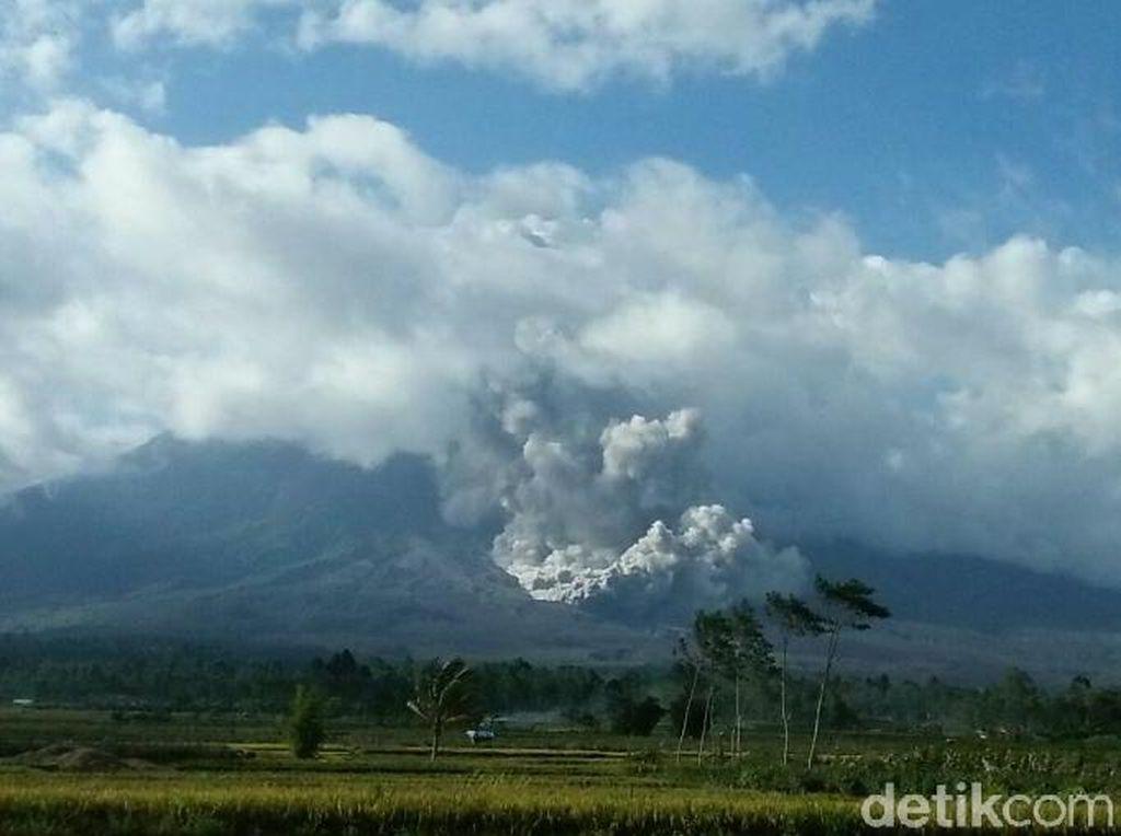 Gunung Semeru Kembali Luncurkan Awan Panas Sejauh 3,5 Km