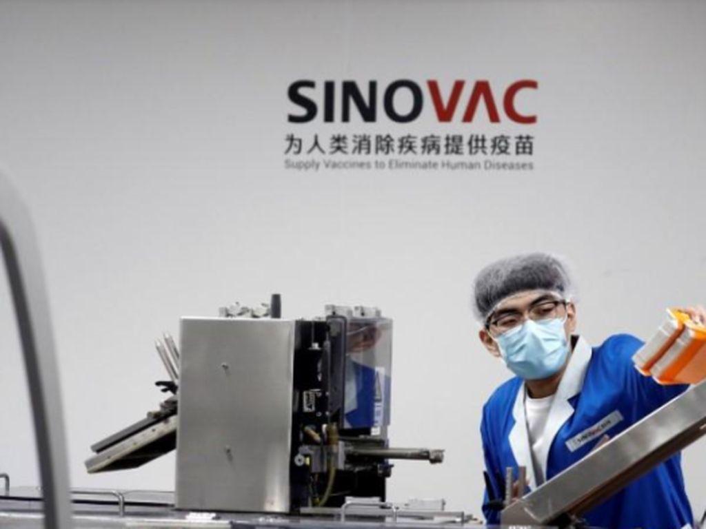 Vaksin Sinovac Dapat Persetujuan WHO, Ini Fakta-faktanya
