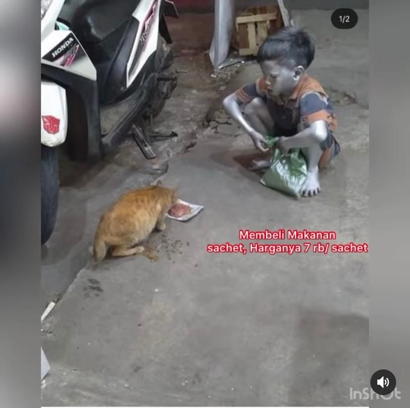 Bocah 'Silver' Ini Menahan Lapar Demi Beri Makan Kucing Jalanan