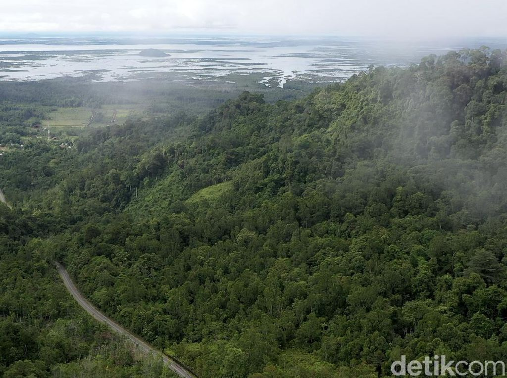 Pulau Kalimantan Berbatasan Langsung dengan Negara Apa? Ini Batas Daerahnya