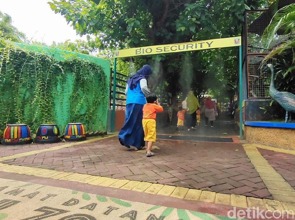 Libur Nataru, Kunjungan Wisata di Maharani Zoo dan Goa Lamongan Masih Landai