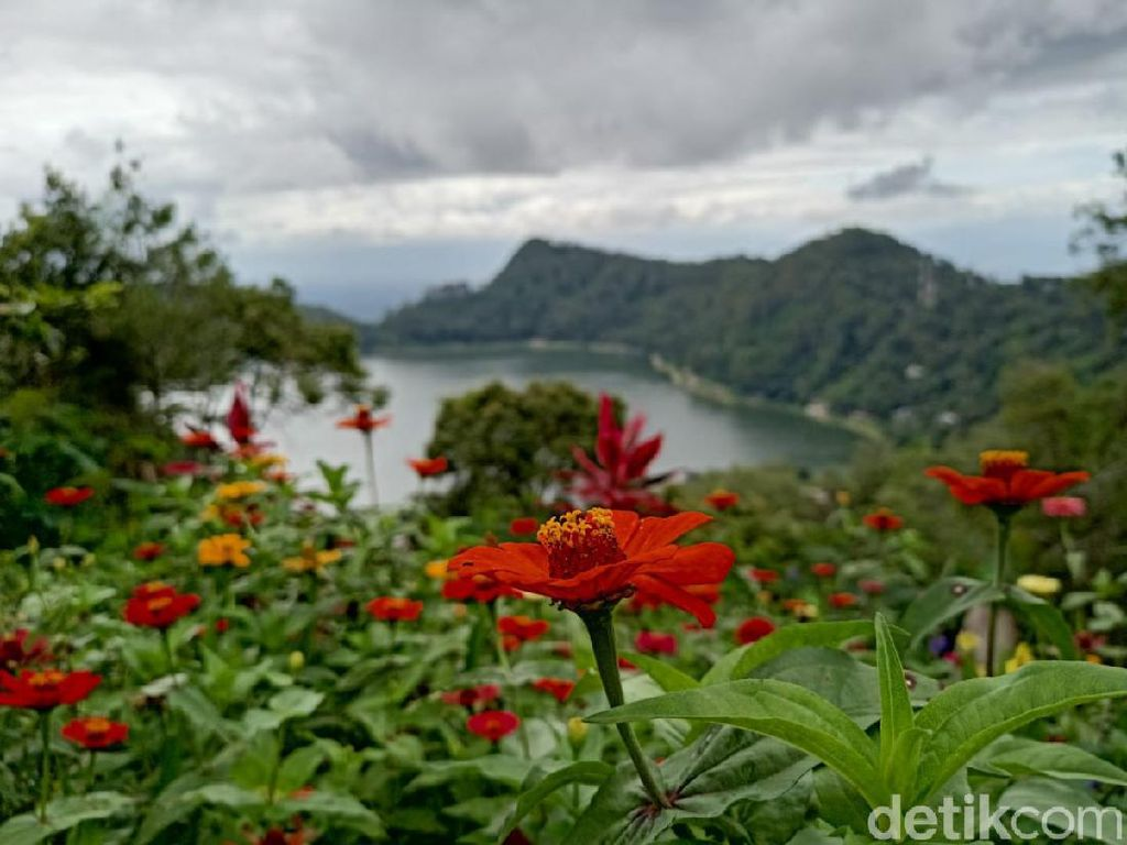 Begitu Cantik, Melihat Telaga Ngebel Ponorogo dari Ketinggian