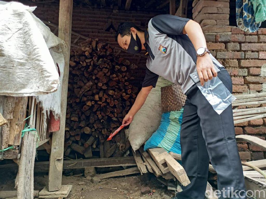 Bayi dengan Perut Terluka Ditemukan Terbuang di Tumpukan Kayu Ponorogo