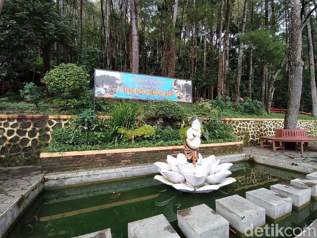 Kebun Raya Gunung Tidar Magelang Ditutup Sementara