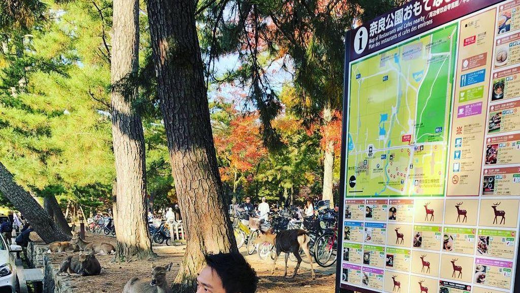 Doyan Makan Enak Saat Liburan, Ini Pose Michael Yukinobu saat Makan Es Krim