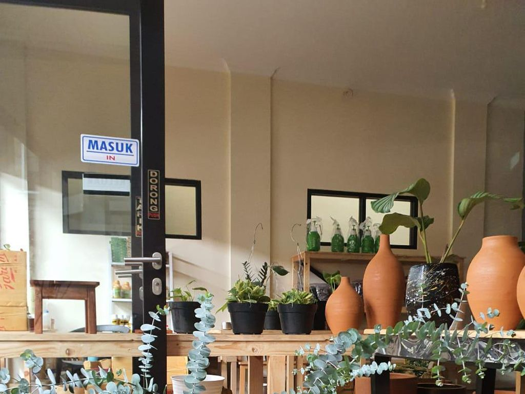 Kisah Pegawai Bank Banting Setir Bisnis Tanaman Hias, Omzet Rp 300 Juta