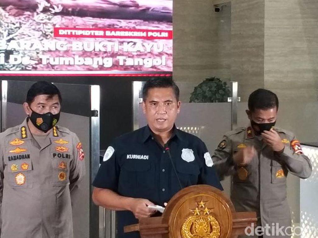 Tersangka Illegal Logging di Kalteng Terancam 15 Tahun Bui-Denda Rp 15 M