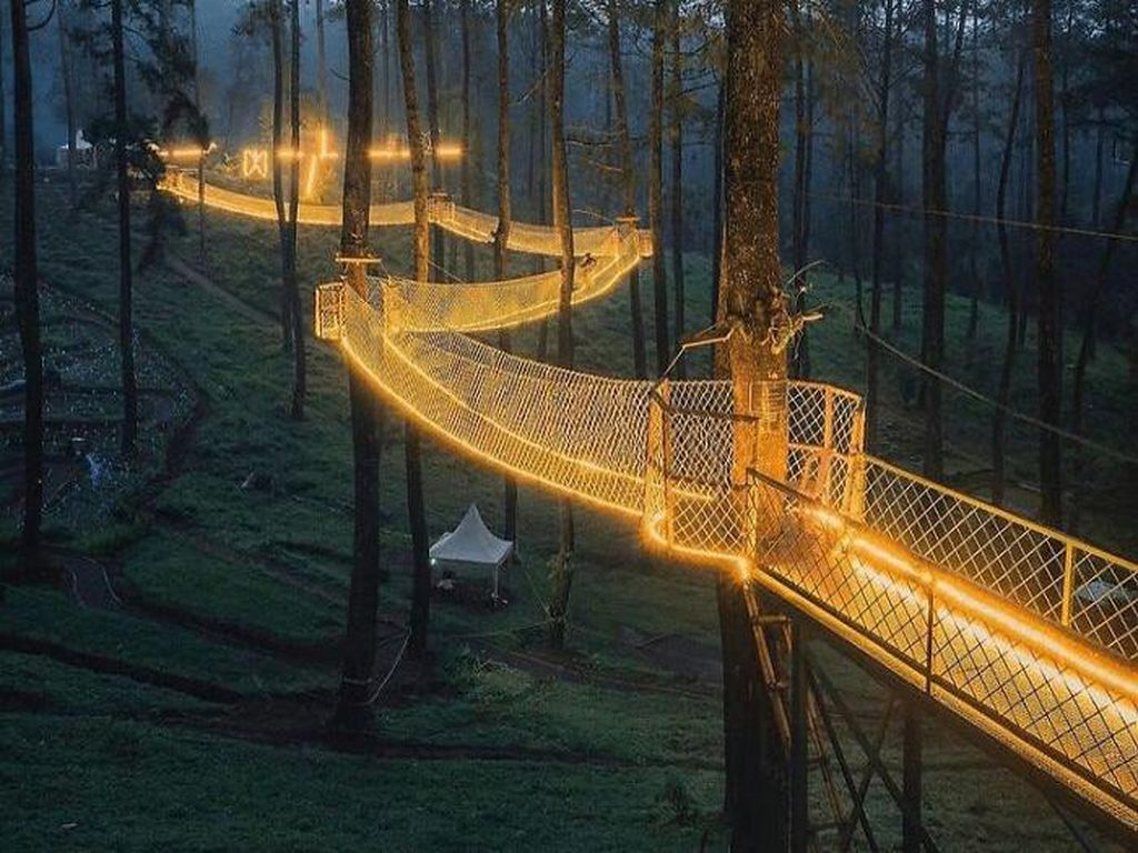 Gemerlap Jembatan Gantung Hiasi Hutan Anggrek Cikole