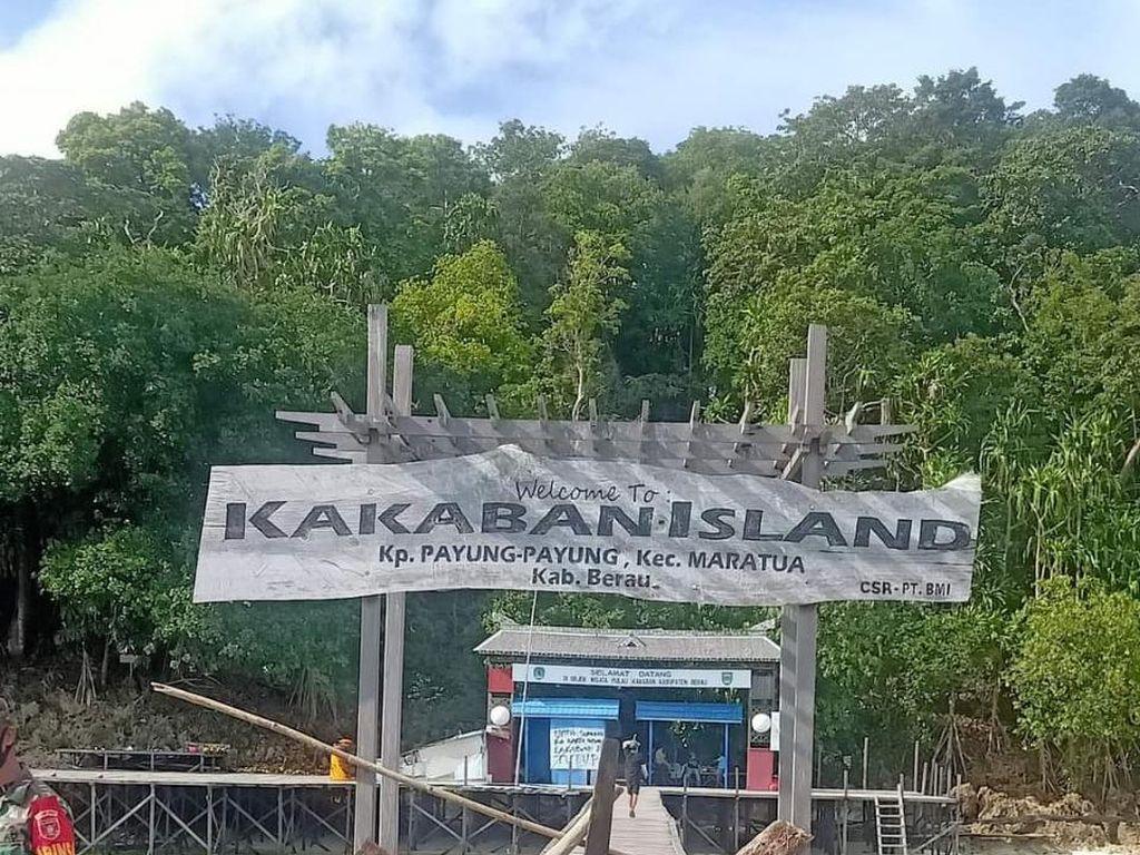 Danau Kakaban Si Ikon Berau Tutup!