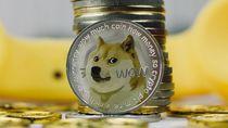 Anjing Shiba Inu, dari Meme Jadi Logo Uang Digital Dogecoin
