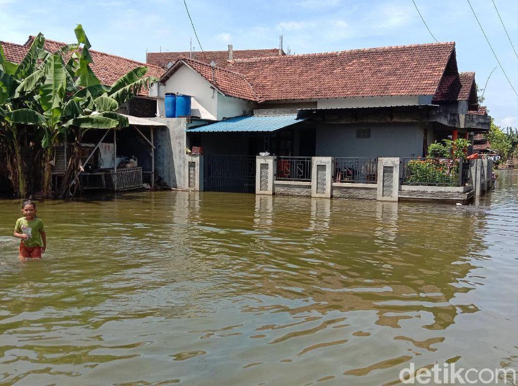 Kondisi Terkini Banjir Akibat Jebolnya Tanggul Sungai Gelis Kudus