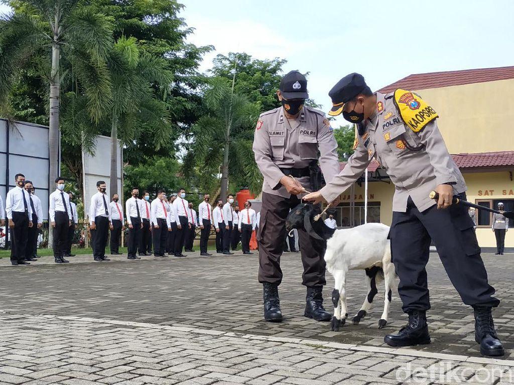 Rajin Apel, Anggota Polres Pacitan Ini Dapat Hadiah Kambing