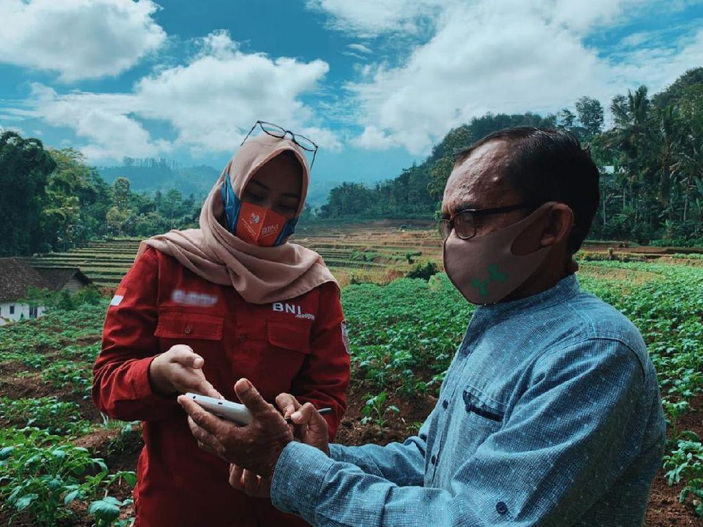 Uji Coba Smart Farming BNI Ditebar di 5 Provinsi