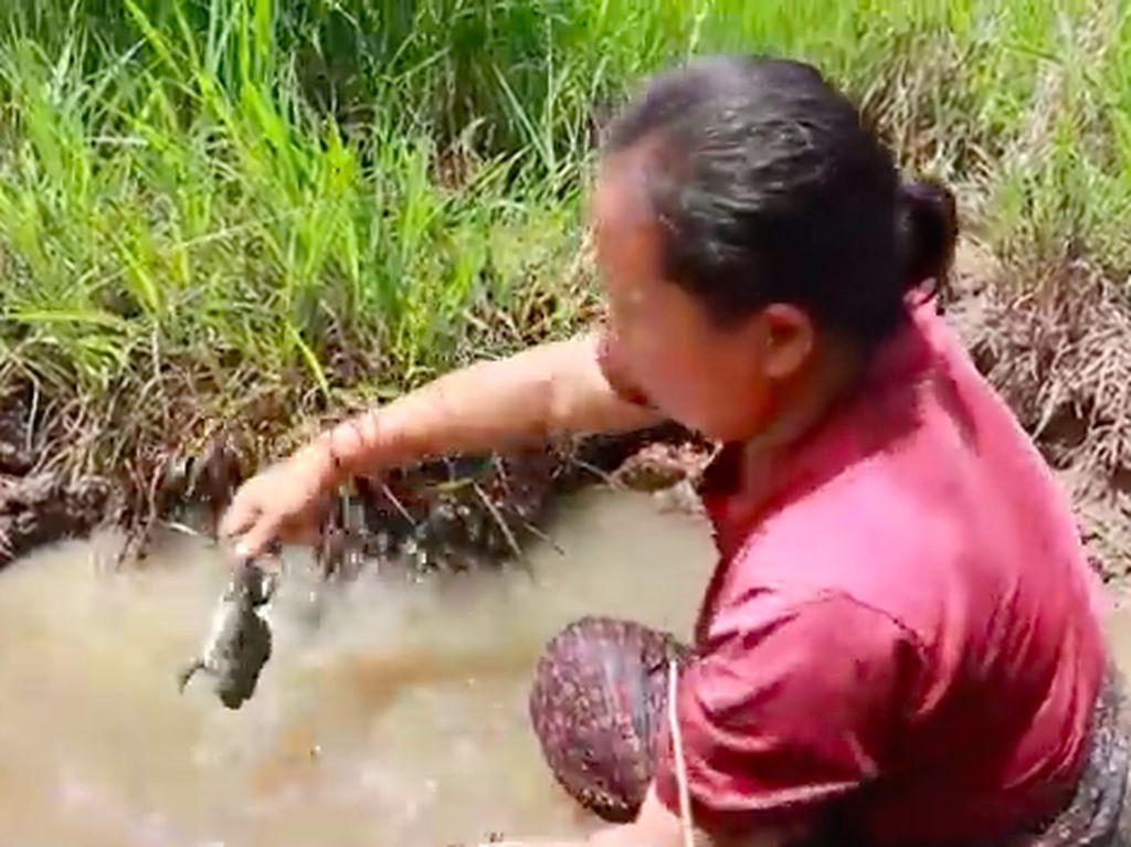 Wanita Laos Hidup di Hutan hingga Efek Negatif Minum Kopi Instan