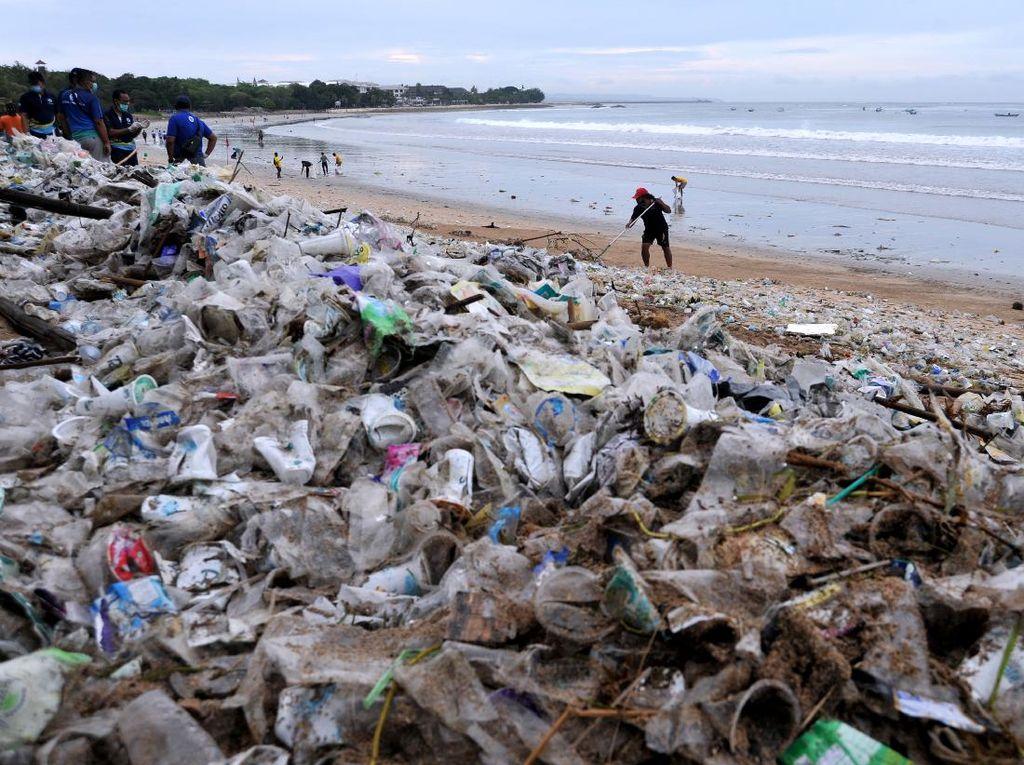 Peringati Hari Lingkungan Hidup, Saatnya Pemuda Ambil Bagian Pulihkan Ekosistem