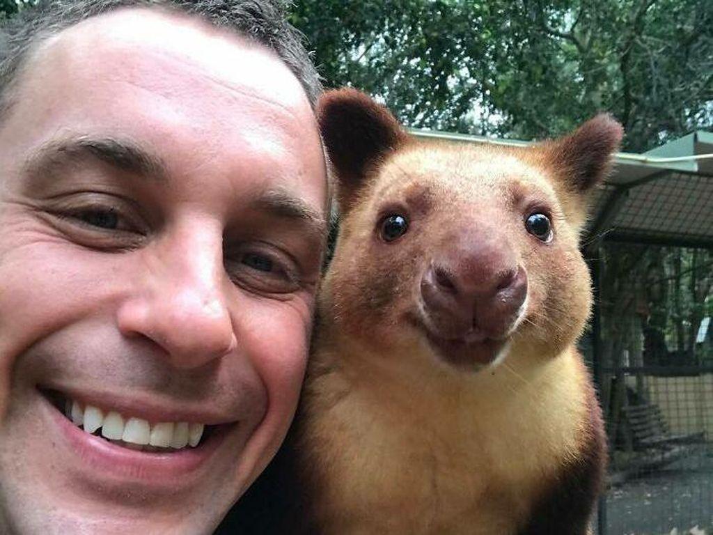 Ketika Zookeeper Seru-seruan dengan Satwa yang Dijaganya