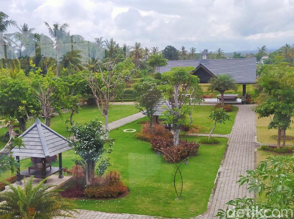 Weekend Seru dengan Suasana Beda, Ada Kafe Seluas 2 Hektar di Banyuwangi