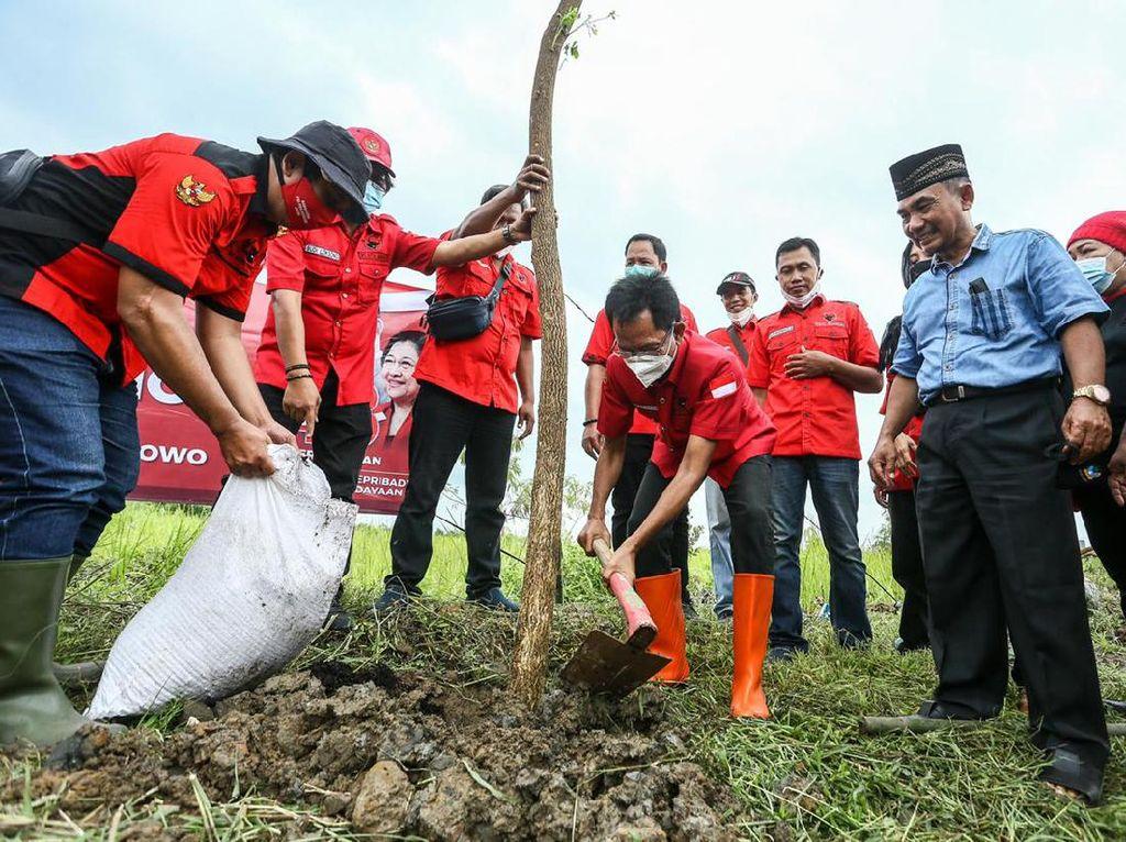 PDIP Surabaya Tanam Pohon dan Sayur Sebagai Wujud Sayang Lingkungan