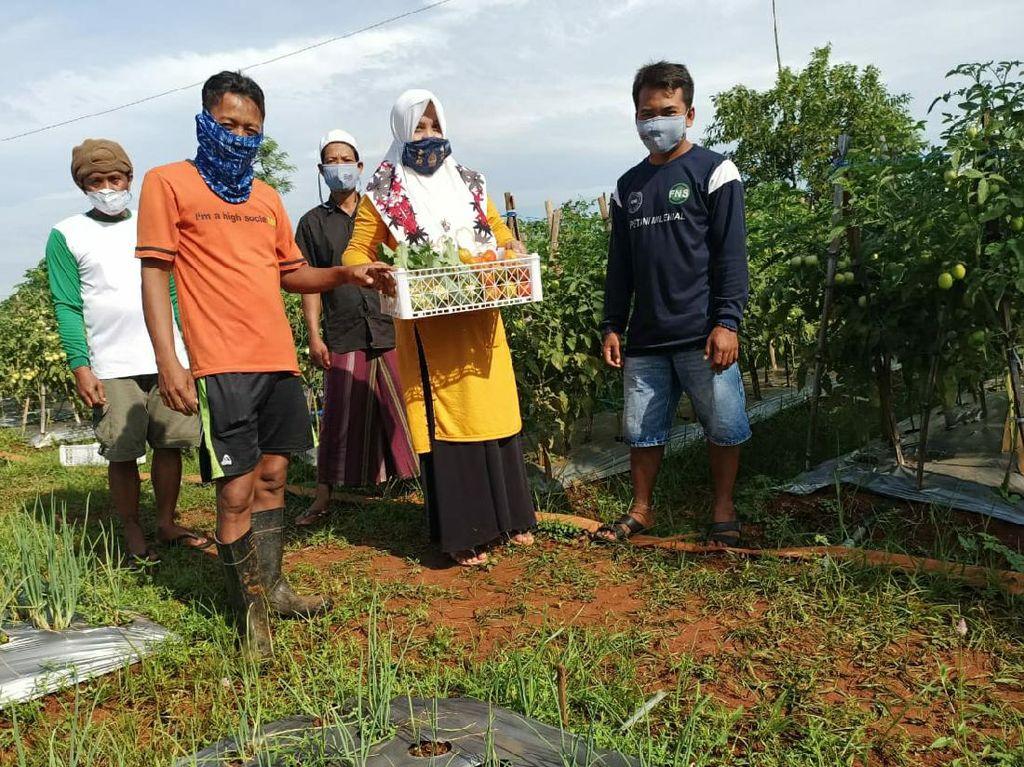 Warga Bangkalan Senang Bisa Kelola Lahan untuk Tanaman Holtikultura