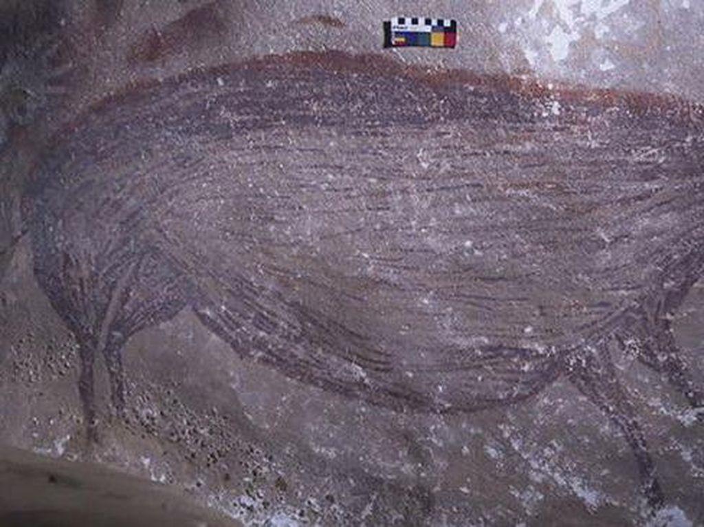 Epik! Lukisan Babi di Gua Sulawesi Berusia 45.000 Tahun, Jadi Tertua di Dunia