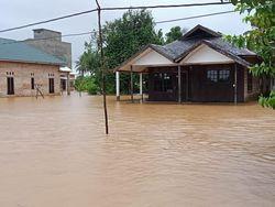 21.990 Jiwa Terdampak Banjir di Kalsel, 6.346 Rumah Terendam