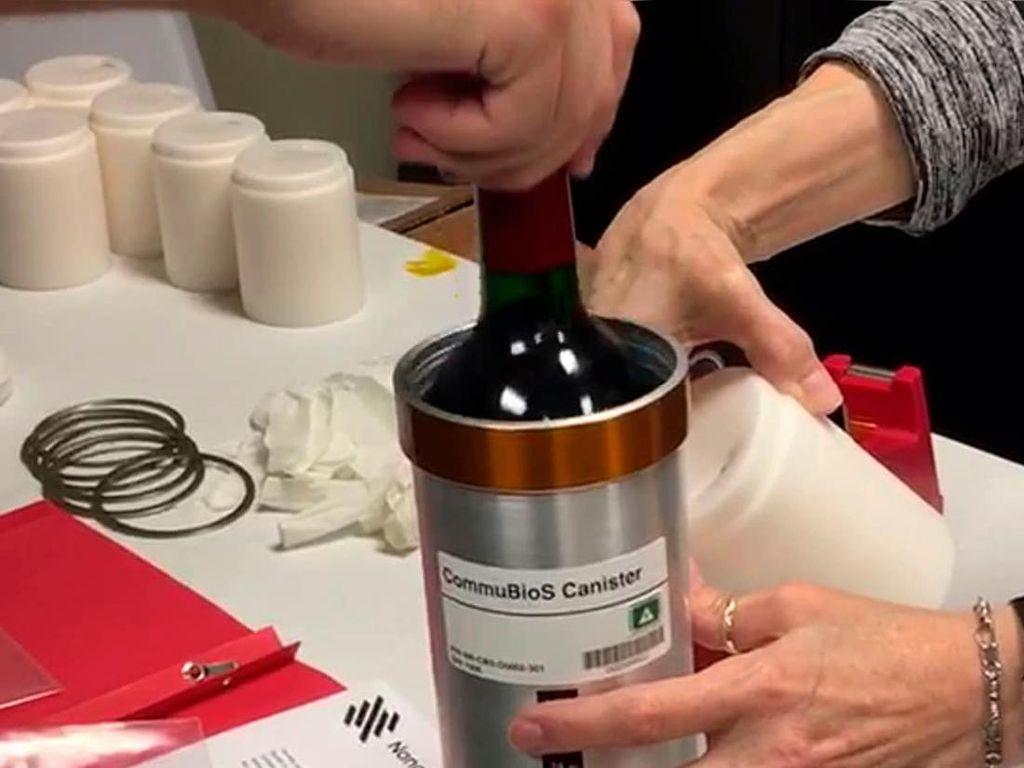 Wine dan Buah Anggur Mendarat Kembali di Bumi Setelah Setahun di Luar Angkasa