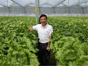 Kisah Bos Disc Tarra: Tutup Bisnis hingga Jadi Petani Sayur