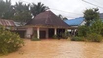 Banjir Kalsel, Denny Indrayana Usul Evakuasi Lewat Udara di Beberapa Titik