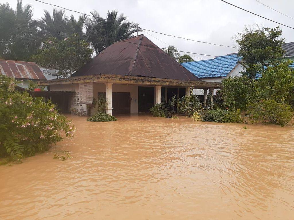 Soal Banjir Kalsel, Denny Indrayana Keluhkan Tambang-Sawit ke Jokowi