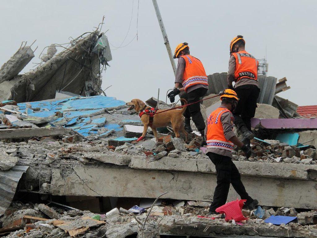 BNPB: Gempa Susulan di Sulbar Masih Mungkin Terjadi tapi sudah Menurun