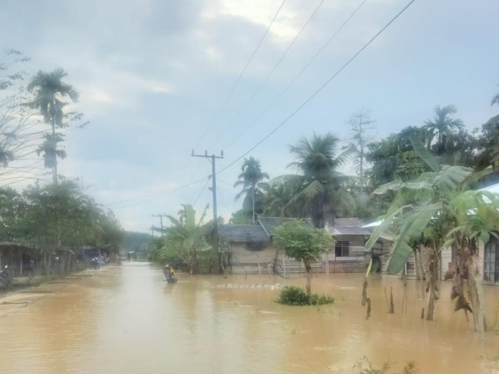 Sungai Meluap, Ratusan Rumah di Aceh Timur Terendam Banjir