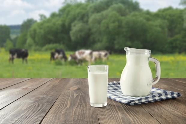 Susu merupakan sumber magnesium alami dan mineral.
