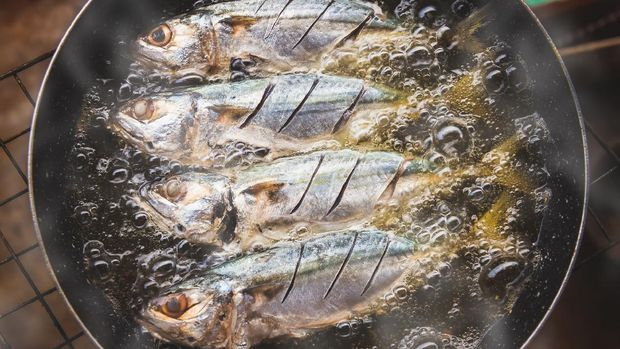 ilustrasi ikan kembung