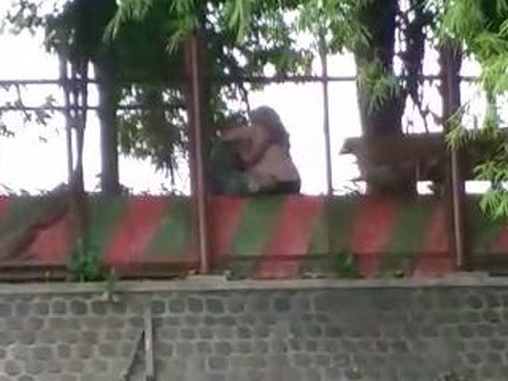 Heboh Video Sejoli Mesum di Ranu Grati Pasuruan