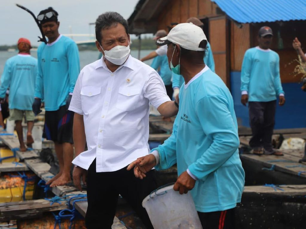 Pekerjaan Rumah Menteri Trenggono