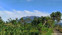 BPBD Banyuwangi Minta Pendaki Gunung Raung Segera Turun