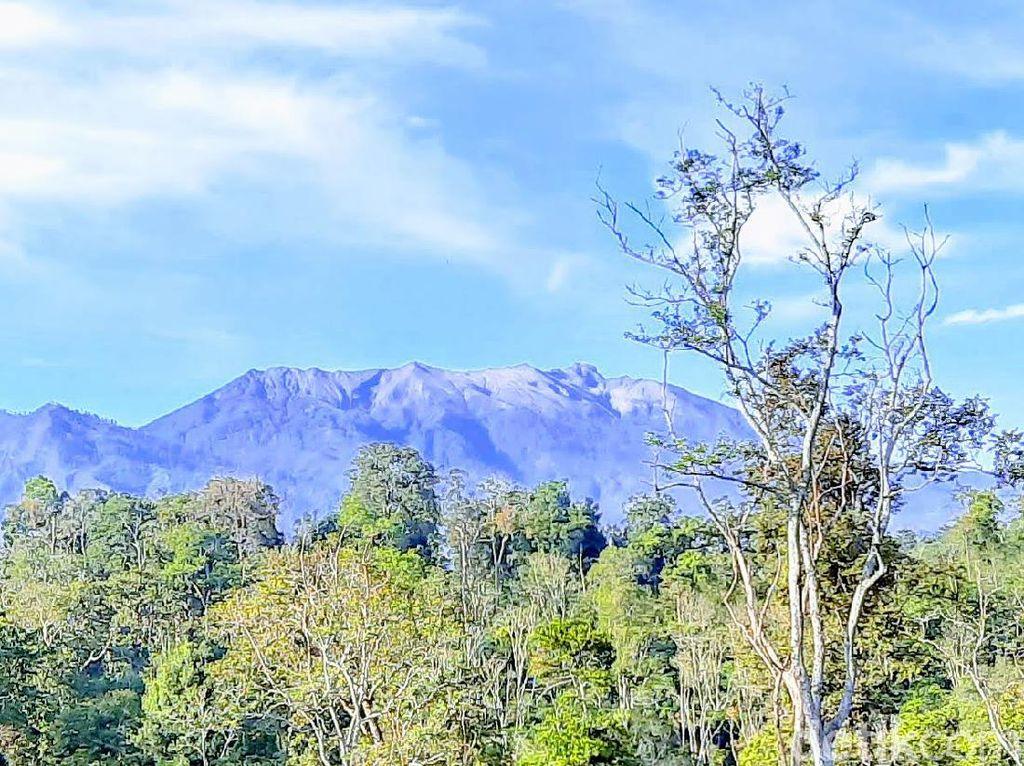 Waspada Energi Tektonisme dan Vulkanisme Gunung Raung dan Merapi