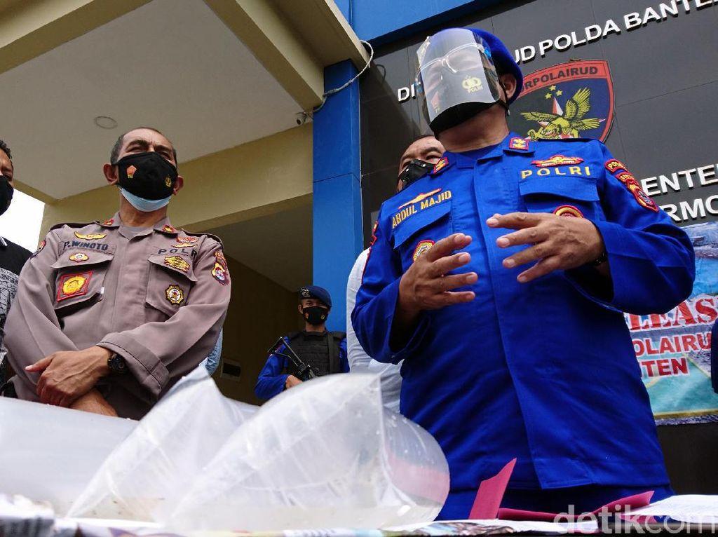 Polisi Amankan 2 Pengedar Benur Ilegal Senilai Rp 6 Miliar
