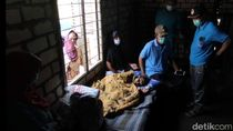 Viral Video Nenek Muntiah yang Sebatang Kara dan Tak Terawat di Lamongan