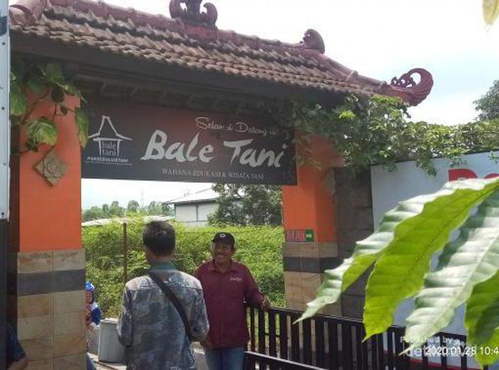 Bale Tani, Wisata Agro Milenial yang Asyik di Jombang