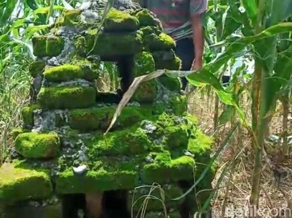 Batu Bata Kuno di Situs Makam Ibu Gajah Mada Diperkirakan dari Masa Majapahit
