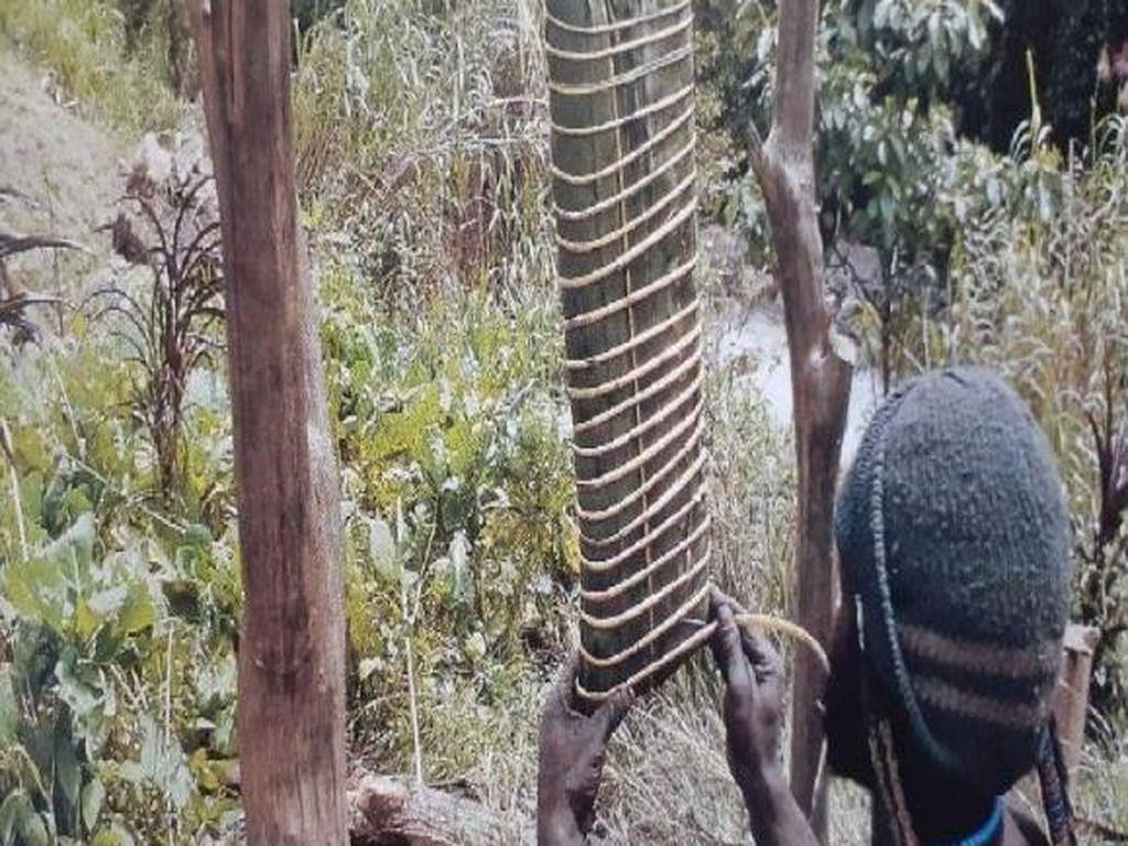 Garam Abu yang Segera Hilang dari Papua
