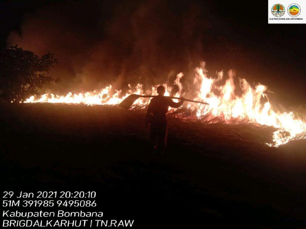 Taman Nasional Rawa Aopa Kebakaran, Belasan Hektar Lahan Terbakar