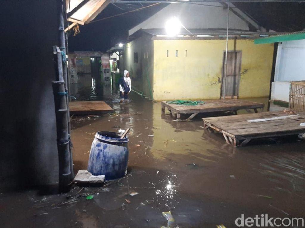 Puluhan Rumah Tergenang Banjir Rob, 2 Perahu Rusak & Tangkis Tepi Pantura Jebol