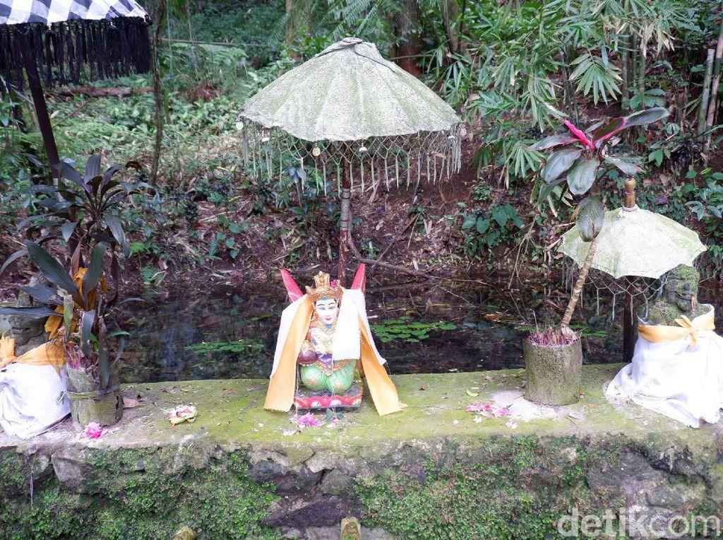 Ritual di Telaga Rowo Bayu Mengenang Gugurnya Puluhan Ribu Orang Melawan VOC