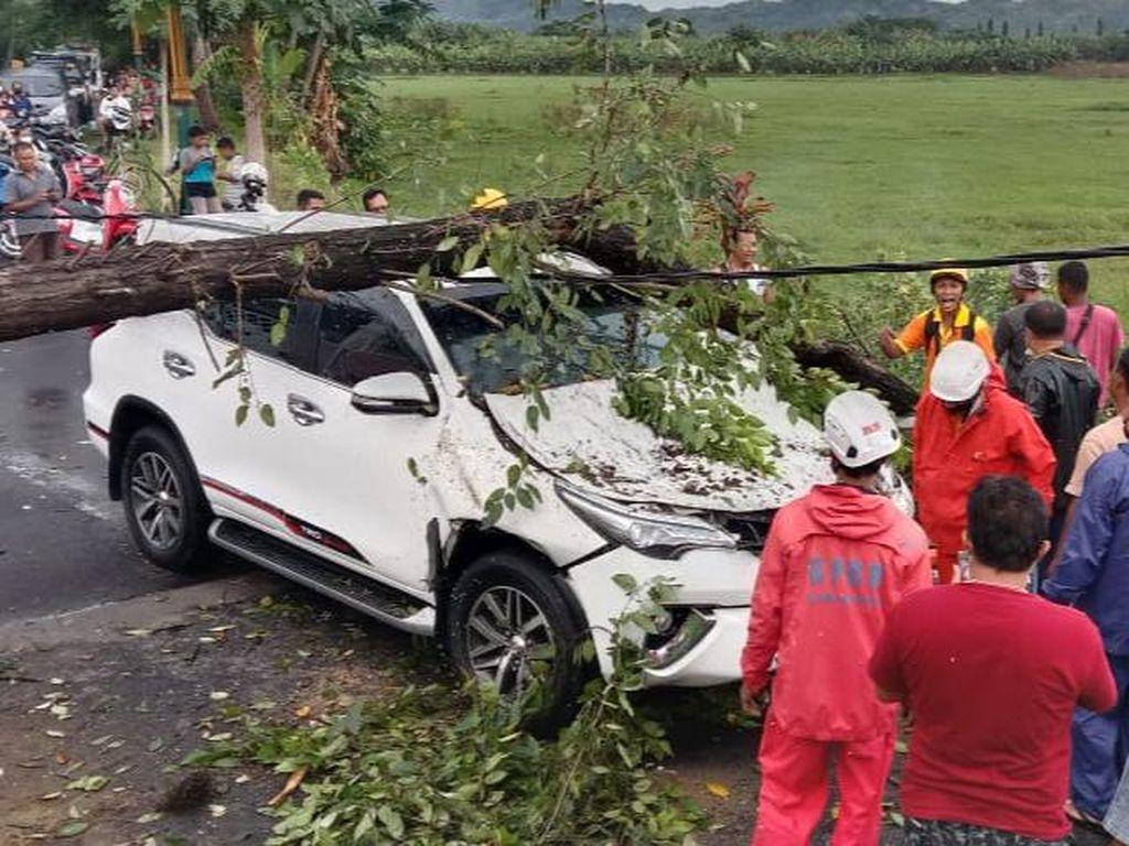 Hujan Angin di Klaten, Pohon Tumbang Timpa Mobil Sedang Melaju