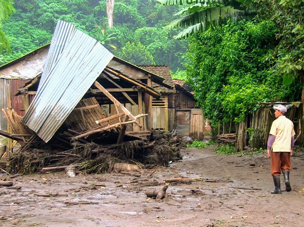 Puluhan Ternak Warga Bondowoso Hilang Tersapu Banjir Bandang Ijen